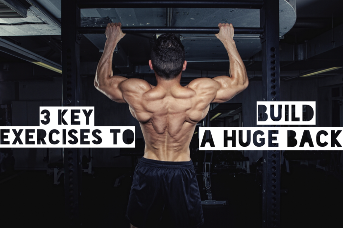 3 Key Exercises to Building a Huge Back