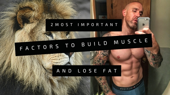 build-muscle-lose-fat